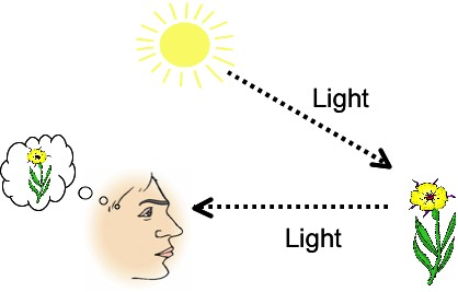Reflection Of Light, Science NCERT Notes, CBSE Notes, Class 7